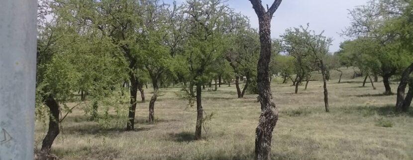 Lote-Alta-Gracia-Country-Golf-10509-m2-venta-7
