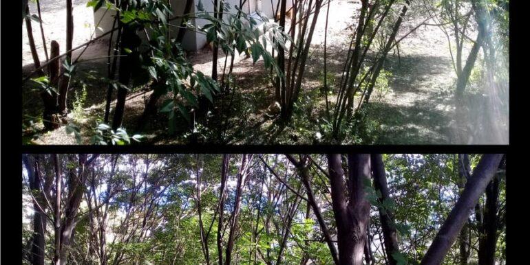 CASA-EN-VENTA-COMUNA-SAN-ROQUE-10